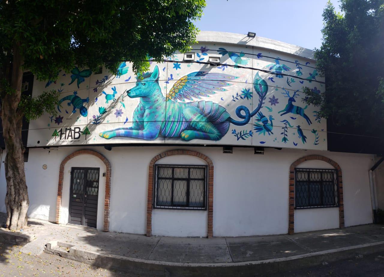 Hermila Tlalpan Suites Photo