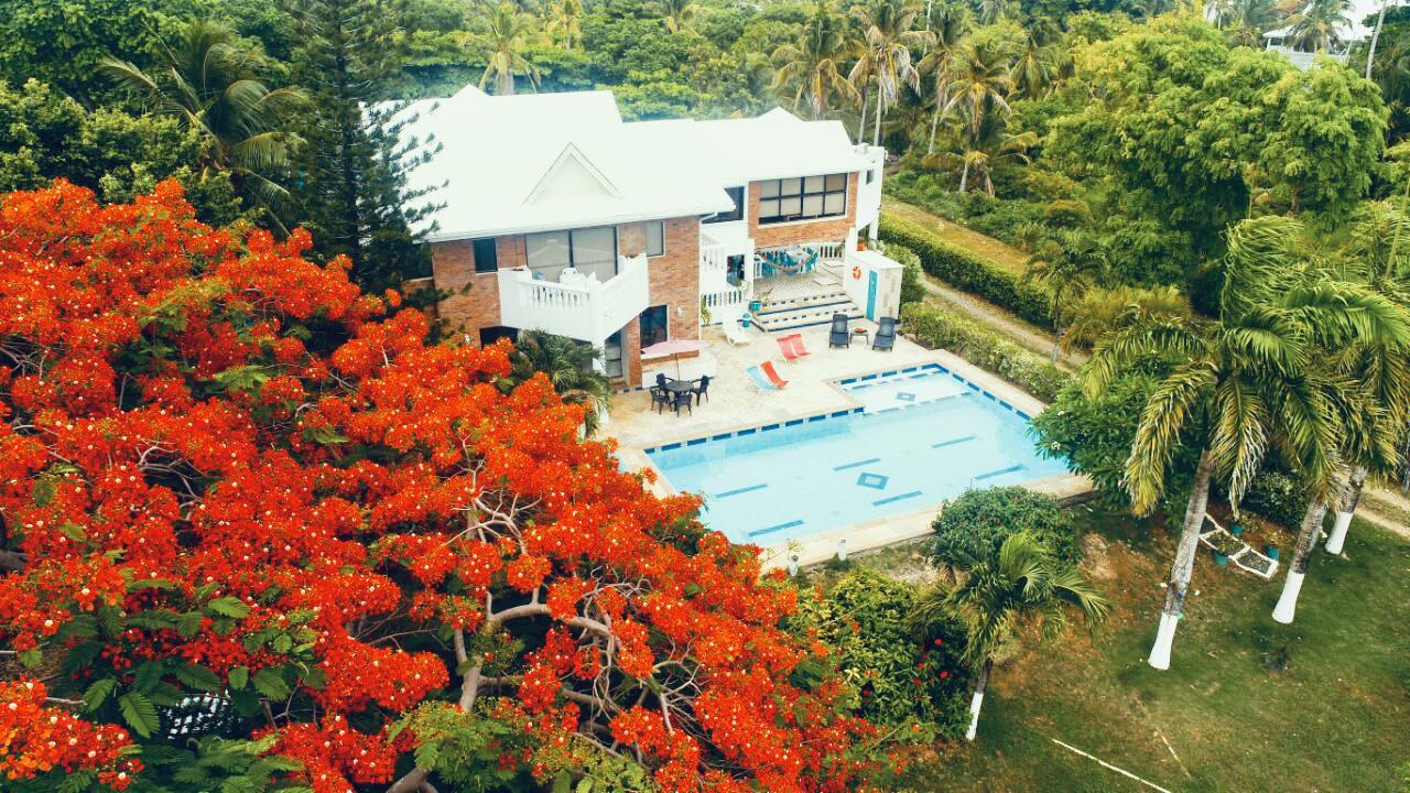 Hotel casa de las flores tropical Photo