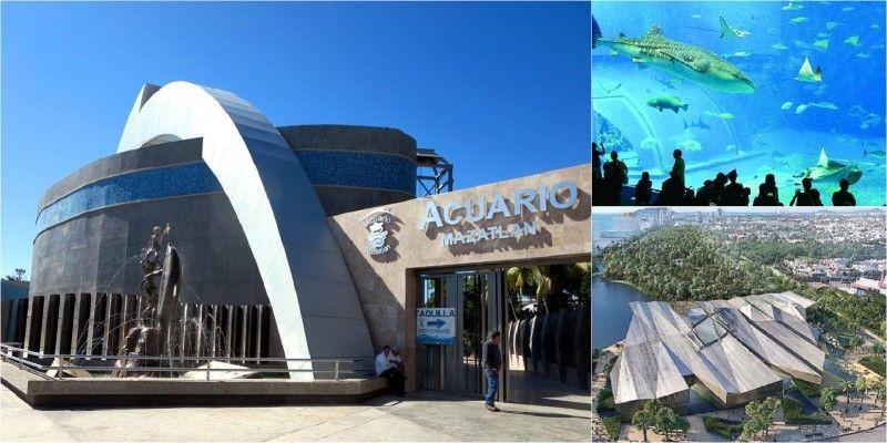 Visit the City Aquarium