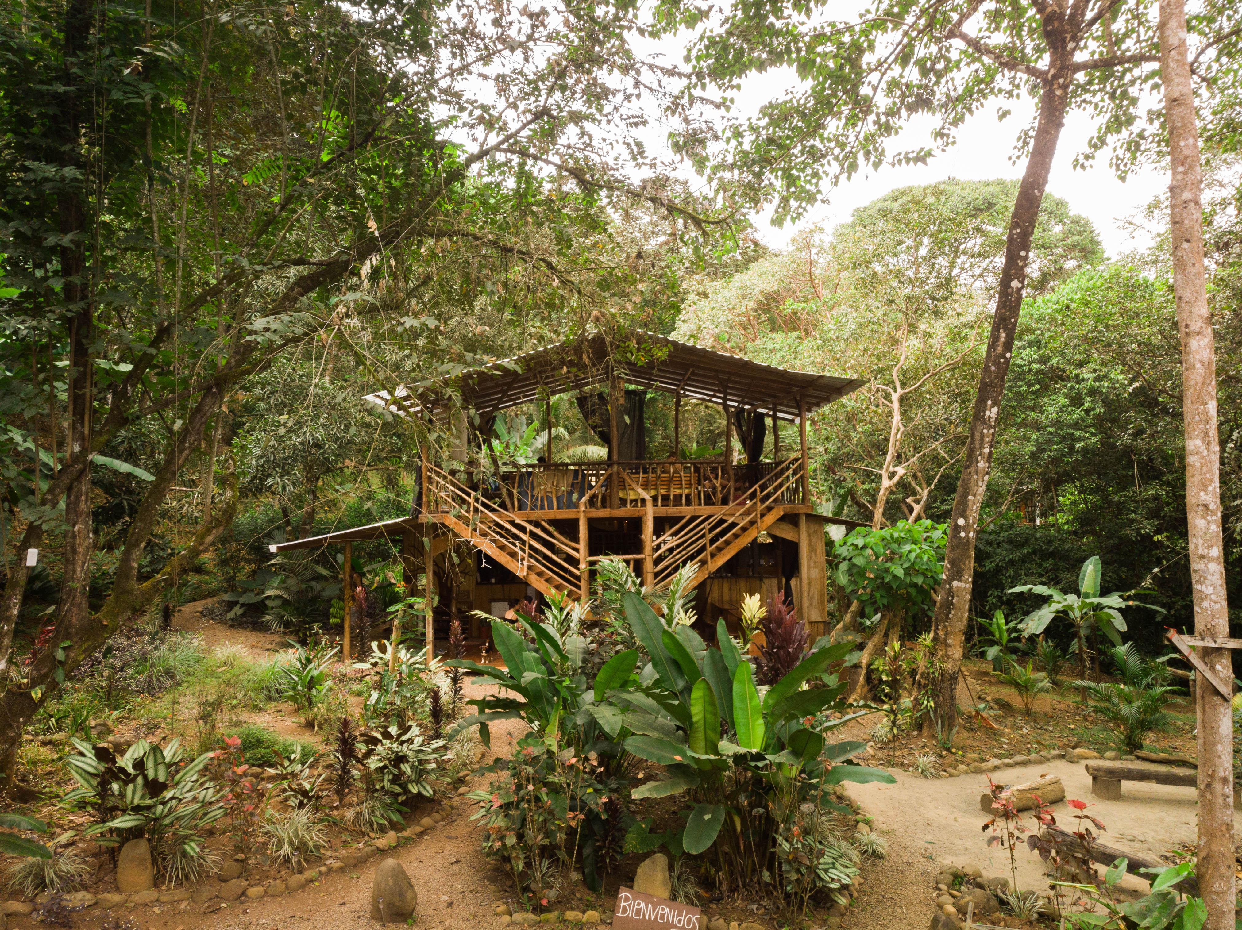 Cascada Elysiana Eco Lodge and Retreat Center Photo