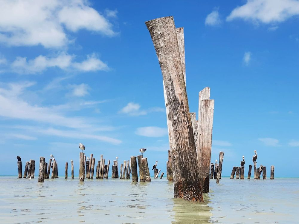 What to do in Holbox?