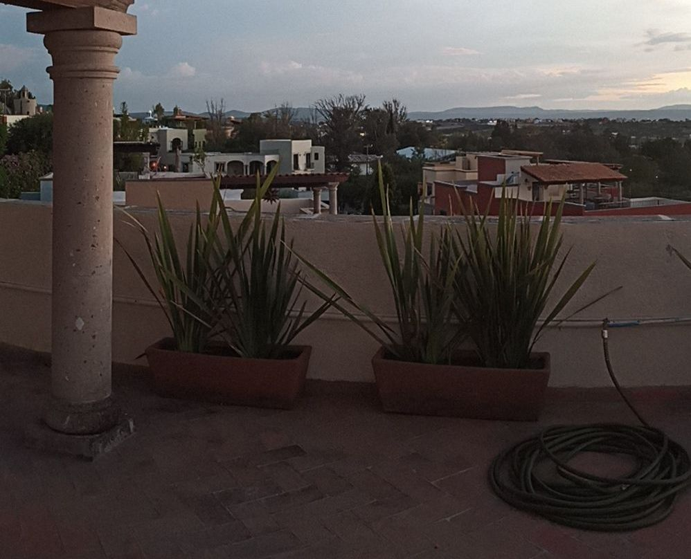 What to do in San Miguel de Allende?